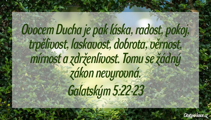 Biblické citáty o lásce